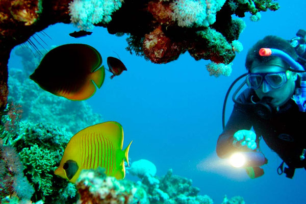 Mahmya Island Snorkeling Trip From Hurghada