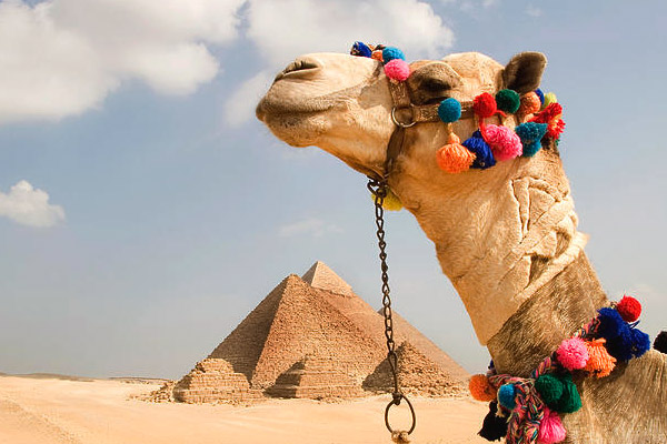 2 Day Tour From Safaga Port To Luxor And Cairo