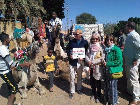 Nubian Village Camel